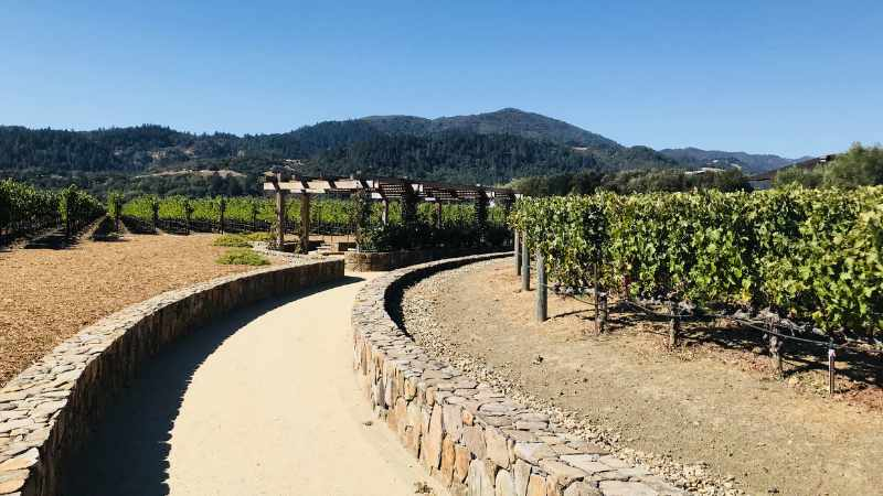 Recruiting Napa mystery shoppers to meet the needs of Napa area businesses.